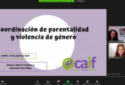 El COPIB celebra una Sessió Clínica per a revisar la intervenció del coordinador de parentalitat en casos de violència de gènere