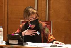 Documentació dins l'espai web de la vocalia de Psicologia de l'Envelliment