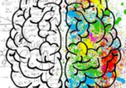 CURS: Altes capacitats: mesures d'intervenció psicoeducativa i socio-emocional