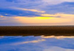 CURS: Aplicació del mindfulness en la pràctica psicològica