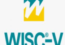 CURS: Aplicació, correcció i interpretació de l'escala WISC-V (escala d'intel·ligència de Wechsler per a nins – V)