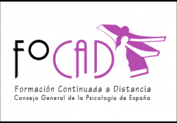 Divisions professionals programa de formació continuada a distància (FOCAD)