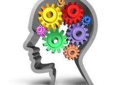 Intervenció amb persones amb discapacitat intel·lectual i problemes de salut mental