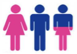 Transsexualitat infantil, adolescent i adults: noves propostes d'intervenció.