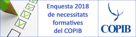 Enquesta 2018 de necessitats formatives del COPIB